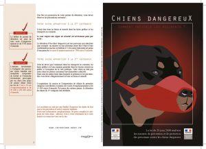 thumbnail of chien-catégorises